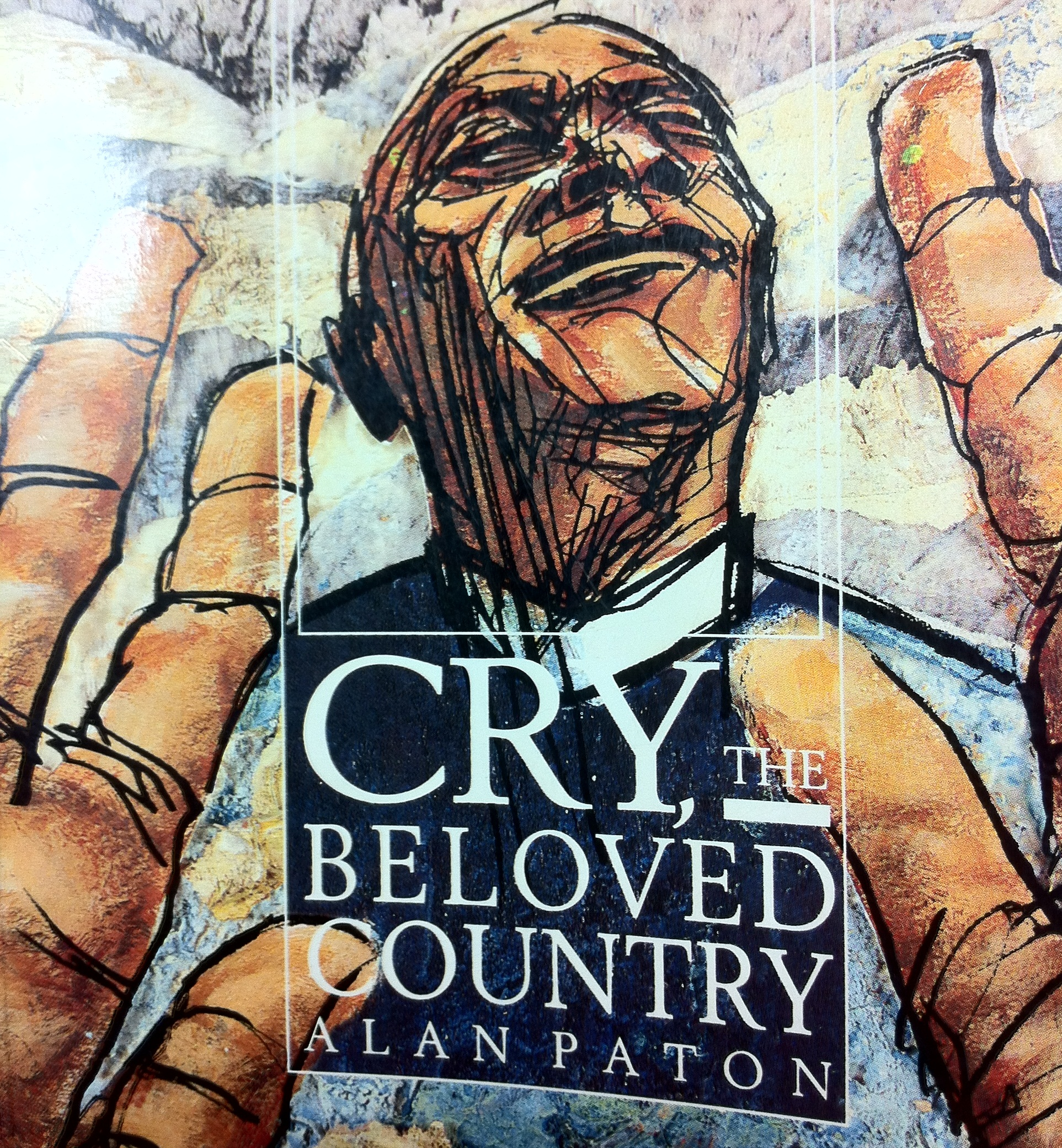 cry beloved country essays